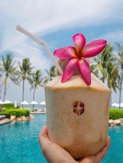 İçməli kokos (Coconut water)