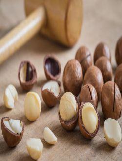 Makadamia fındığı (kq)