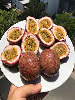 Marakuyya (Passion Fruit) - Ehtiras Meyvəsi