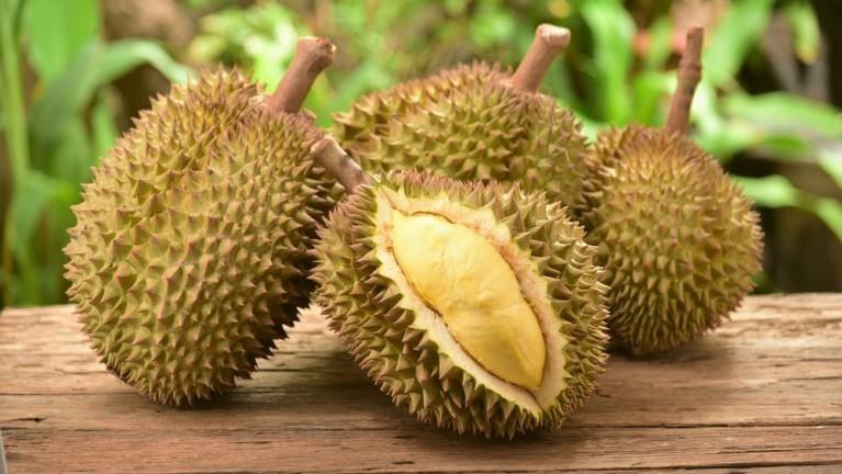 Durian (kq)